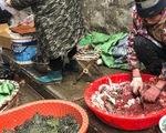 Trung Quốc cấm bán động vật hoang dã, 80 người chết vì virus corona mới