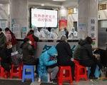 Chuyên gia nói có 44.000 ca nhiễm virus corona ở Vũ Hán, kêu gọi