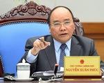 Thủ tướng yêu cầu 3 bộ báo cáo trách nhiệm vì để giá thịt heo tăng cao