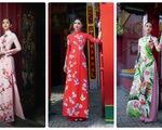 Ngắm Hoa hậu Tiểu Vy trong những tà áo dài sắc hồng, đỏ du xuân