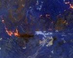 Trời dịu mát, Úc hy vọng giảm bớt cháy rừng