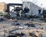 Máy bay Ukraine rơi ở Iran, 176 người thiệt mạng