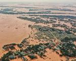 Phó thủ tướng yêu cầu chủ động sơ tán người dân trước mưa lũ