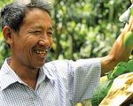 Đồng Tháp hội quán giúp nông dân nghĩ mới làm mới