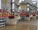 Xả lũ cống Trà Sư đưa phù sa về vùng hạ lưu đồng bằng sông Cửu Long