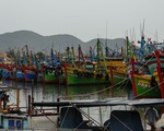 Hai tàu cá Bình Định chìm trên đường tránh trú bão, 26 ngư dân mất tích