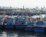 2 tàu chìm, 46 tàu Bình Định đang vào bờ, cấp bão không giảm