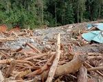 Vụ lở núi làm 11 người mất tích ở Phước Sơn: Đã tìm thấy 5 thi thể