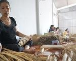 Lao động nông thôn thoát nghèo nhờ học nghề