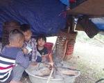 Sau mưa lũ, người dân bản Sắt vẫn chưa có chỗ định cư