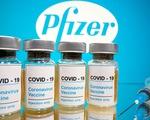 Hãng Pfizer chọn 4 bang của Mỹ để thử nghiệm vận chuyển vắc xin COVID-19