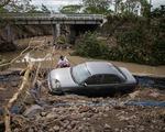 Bão Goni: 20 người chết, 90% nhà cửa trên đảo bị hư hại ở Philippines