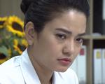 CDC Hà Nội: Phim