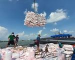 Giá gạo Việt xuất khẩu cao nhất trong 9 năm