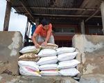 Phú Yên, Khánh Hòa sơ tán hàng ngàn dân tránh bão số 12