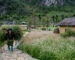 Thiên nhiên và con người là tiềm năng vô tận cho du lịch Tây Bắc, Đông Bắc