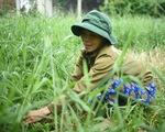 Báo Tuổi Trẻ cùng GreenFeed trao 920 triệu đồng vốn cho nông dân Bình Định