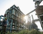 Dự án Nhà máy Gang thép Thái Nguyên 8.100 tỉ