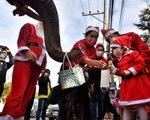 Ông già Noel cưỡi voi phát khẩu trang