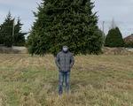Giáng sinh ở xứ người giữa COVID-19