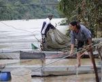 Vụ thủy điện Buôn Kuốp xả lũ: