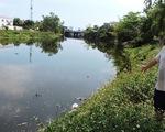 Cá chết dày đặc, bốc mùi hôi thối ngày đêm trên sông Cầu Dứa, Nha Trang