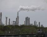 Thế giới mất 8 tỉ USD mỗi ngày do ô nhiễm từ đốt nhiên liệu hóa thạch