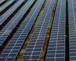 36 dự án điện mặt trời sẽ 'thoát' cơ chế đấu thầu?