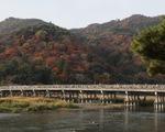 Vượt COVID-19, Kyoto kích cầu bằng chiến dịch