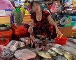 Rùa biển quý hiếm bị xẻ thịt bán ở chợ Hà Tiên?