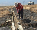 Nam Trung Bộ - Tây Nguyên: Hạn đến sớm, sương muối