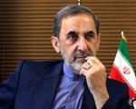 Giám đốc bệnh viện điều trị COVID-19 lớn nhất Iran nhiễm bệnh