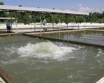 Mặn vượt đỉnh 2019, Đà Nẵng yêu cầu thủy điện vận hành xả nước