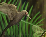 Loài khủng long chỉ bằng con chim ruồi, nhỏ nhất thế giới