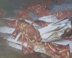 Phát hiện 50 tấn nội tạng không nguồn gốc trong trang trại ở Hải Dương