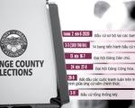 Kinh điển ngày bầu cử