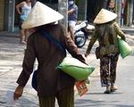 3 người bỏ dở chén trà, mua 1,5 tấn gạo chia cho người nghèo trước giờ cách ly