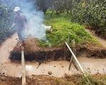 Chất thải lạ đổ trộm vào vườn nhà dân, đốt đâu cháy đó