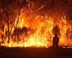 Australia phát triển vệ tinh dự báo cháy rừng