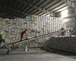 Thủ tướng cho xuất khẩu gạo trở lại nhưng phải đảm bảo an ninh lương thực