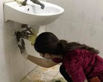 Những bác sĩ chữa COVID-19 kiêm luôn phụ hồ, sửa điện nước