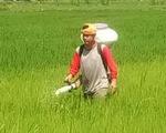 Thai League tạm nghỉ: Cầu thủ, HLV làm ruộng, chăn bò, bán bánh mì... kiếm sống