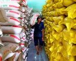 Hai bộ Công thương, Tài chính phải báo cáo Thủ tướng việc xuất khẩu gạo