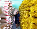 Điều tra vụ 7 cục dự trữ cho gửi gạo vào kho nhà nước