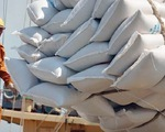 Kiến nghị Thủ tướng cho xuất khẩu các lô gạo đã đưa vào cảng trước ngày 24-3