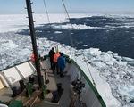 Lần đầu phát hiện hạt vi nhựa trong băng Nam Cực