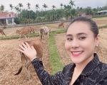 Nghệ sĩ Việt về quê, kêu gọi người dân ở nhà phòng COVID-19