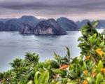 Báo Mỹ: Việt Nam đang chiếm ưu thế trong phục hồi du lịch