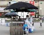 Reuters: Việt Nam quyết tâm cứu phi công người Anh bị COVID-19