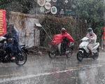 TP.HCM mưa dông mạnh, cây xanh bật gốc